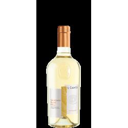 Sauvignon Blanc Friuli DOC...